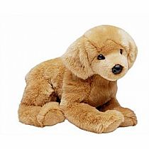 Douglas Dog: Honey Golden Retriever 24""
