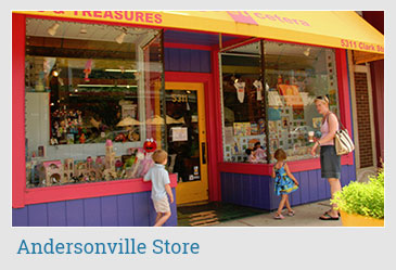 Andersonville Store